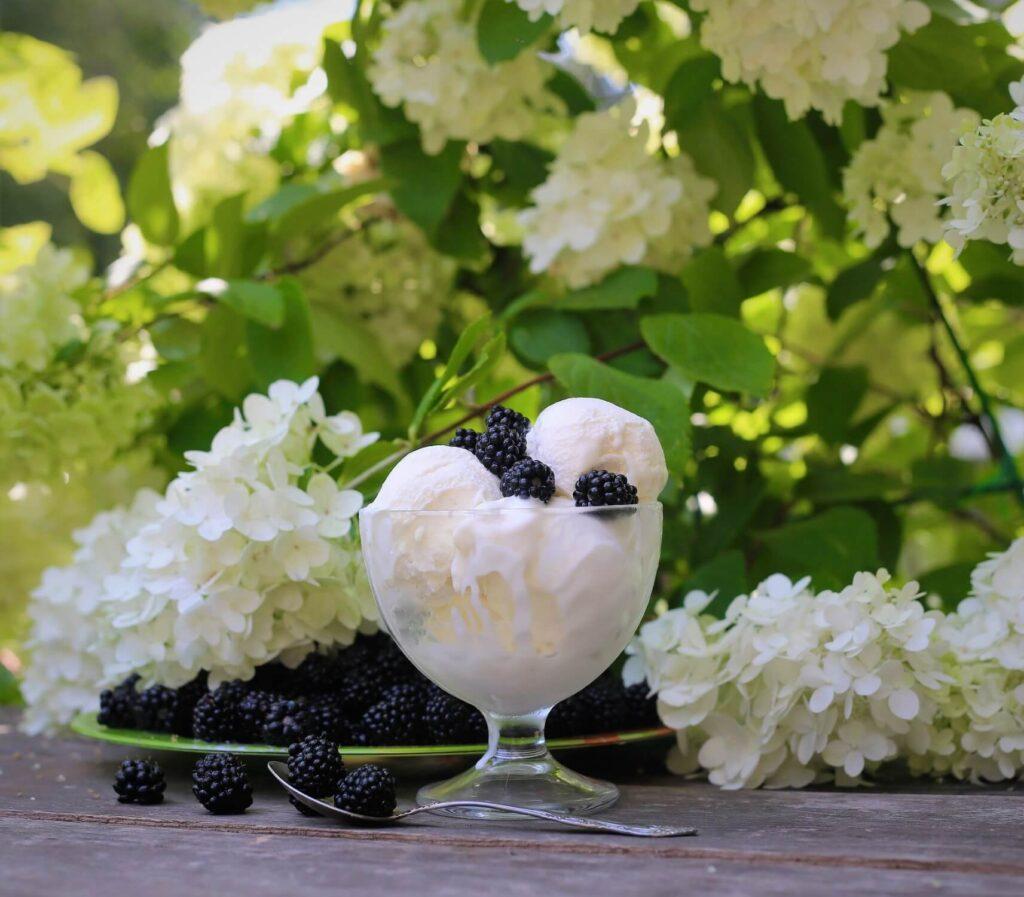Easy Almond Milk Ice Cream